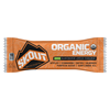 Skout Organic Washington Apple Cinnamon Energy Bar